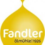 Fandler Logo A_4c_hA